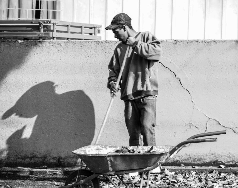 worker by IreneLinkevicius