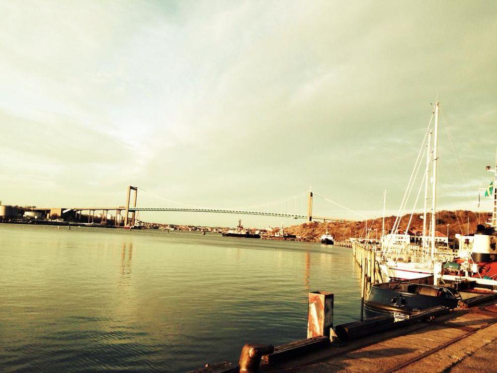 Bridge by PhotoMonique