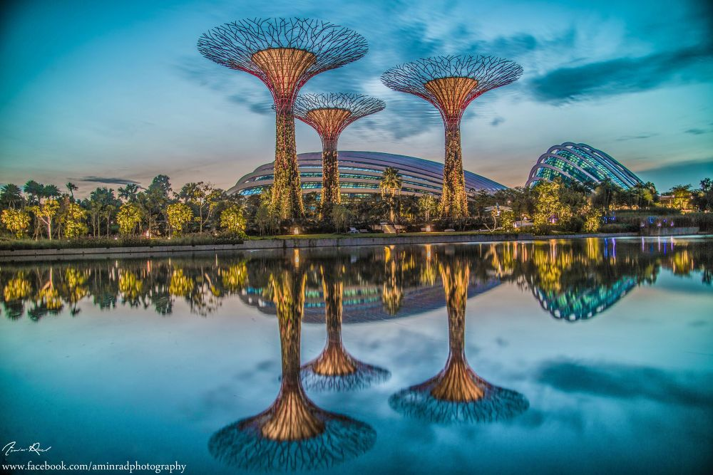 Magical Morning at Singapore Gardens by the bay  by AminRad