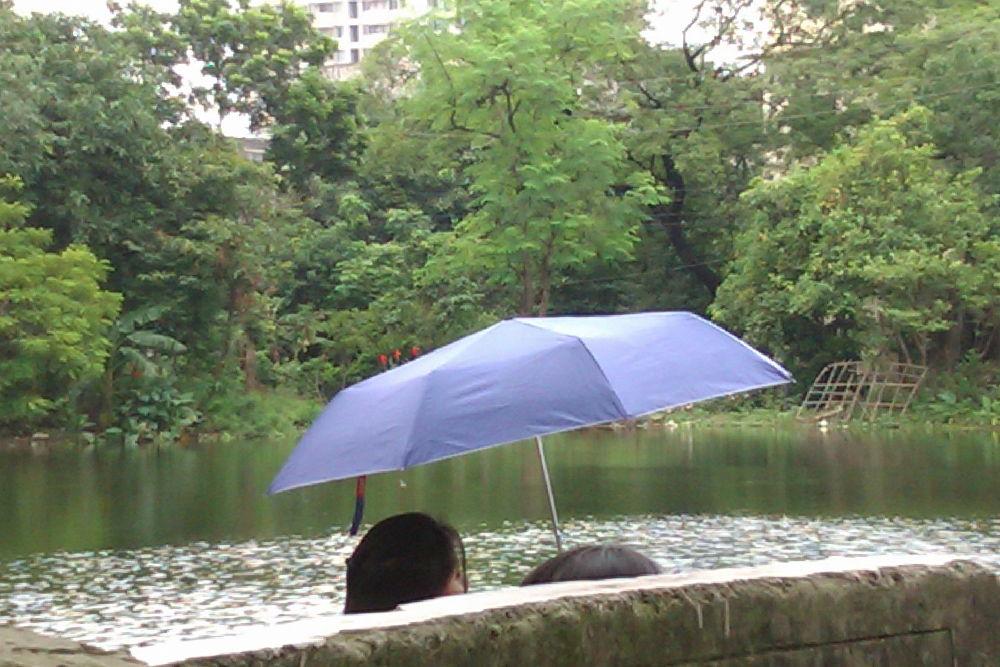 93.GOSSIPING UNDER PROTECTOR OF SUMMER HEAT.jpg by ShyamalKBanik