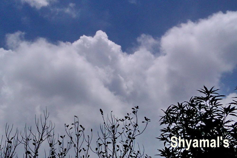 SKY VIEW by ShyamalKBanik