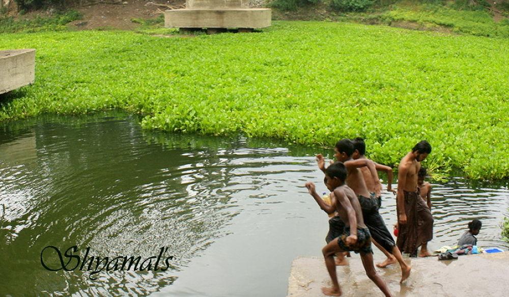 IMG_2892_ SKB ....[ LITTLE SWIMMERS ACTION ] by ShyamalKBanik