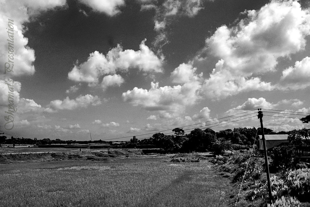SKB-[00]-LAND SIGHT-2013 by ShyamalKBanik