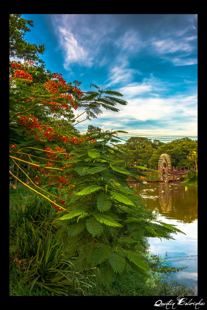 Siem Reap by quentin calvinhac