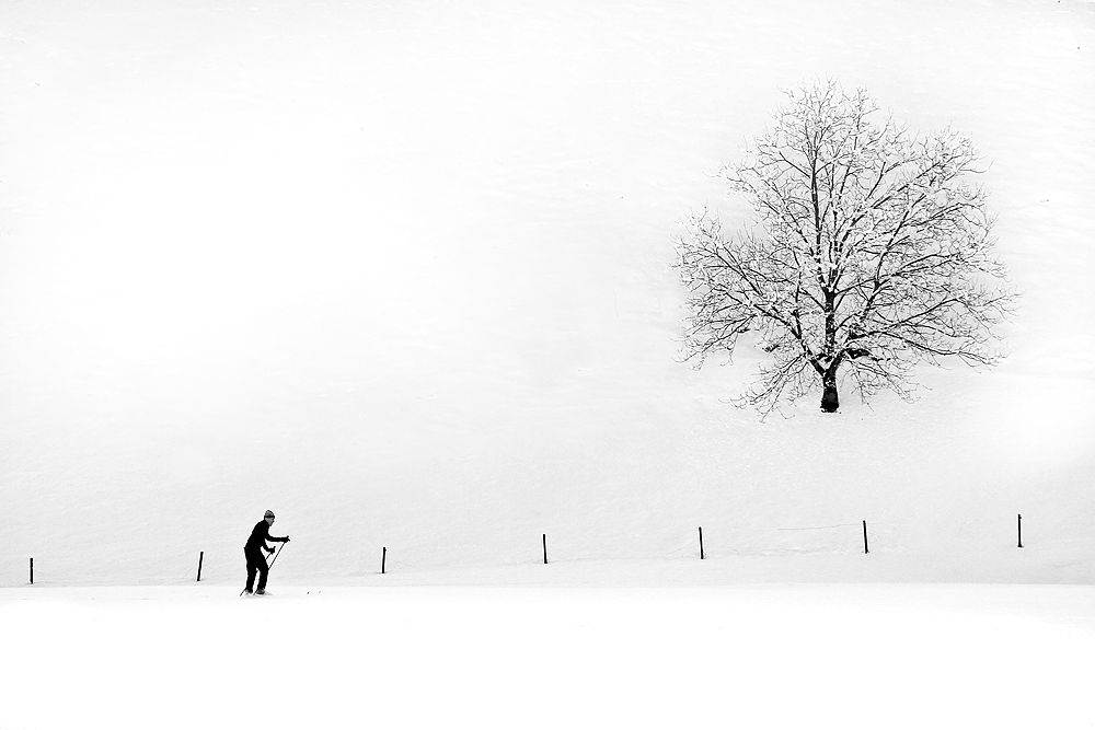 Skiing by Domen Dolenc