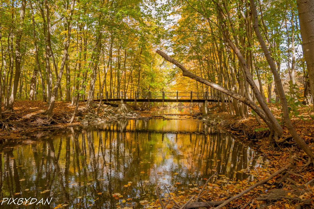 Fall Colors In Wisconsin by Daniel Wade