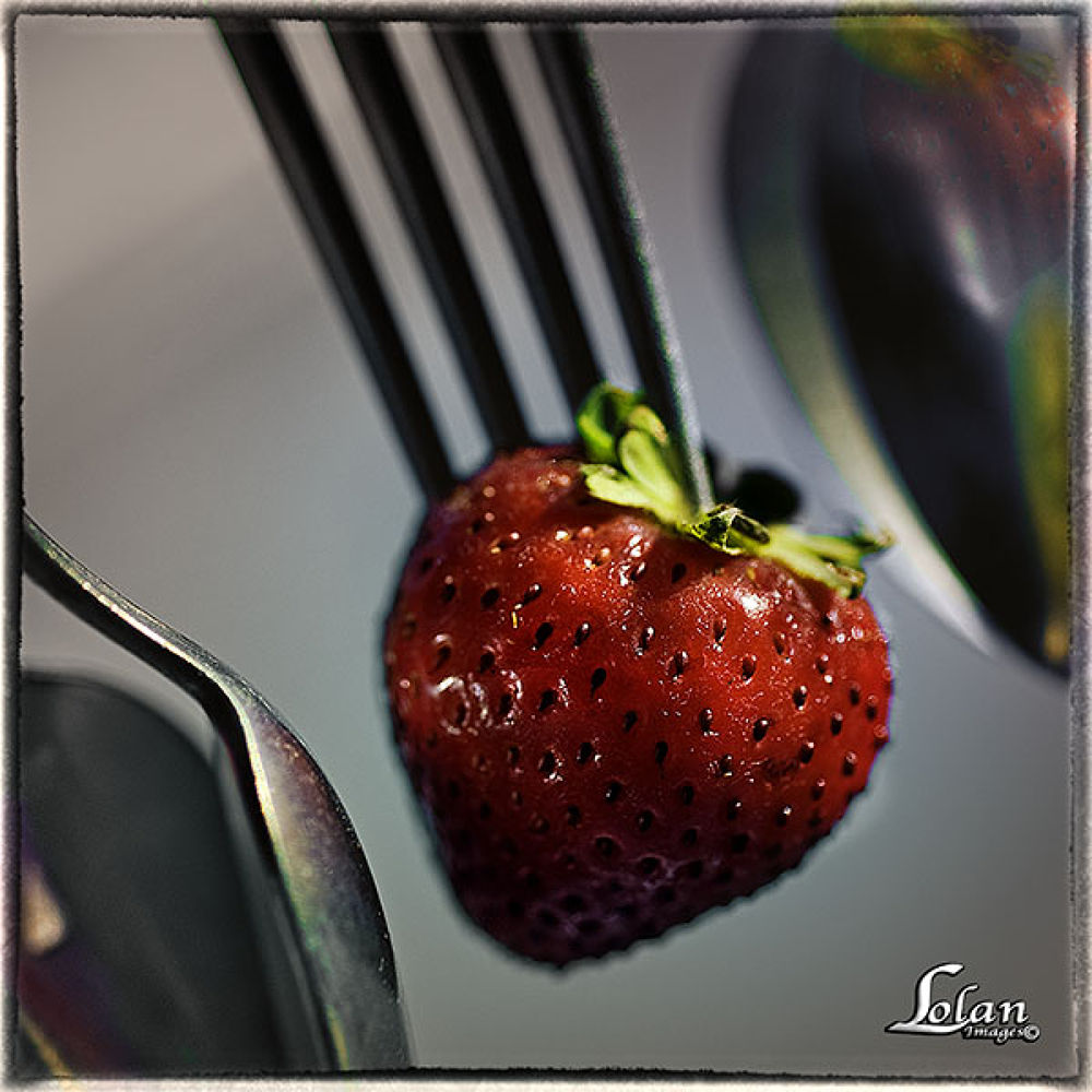 """""""Berry"""" red by tlol"""