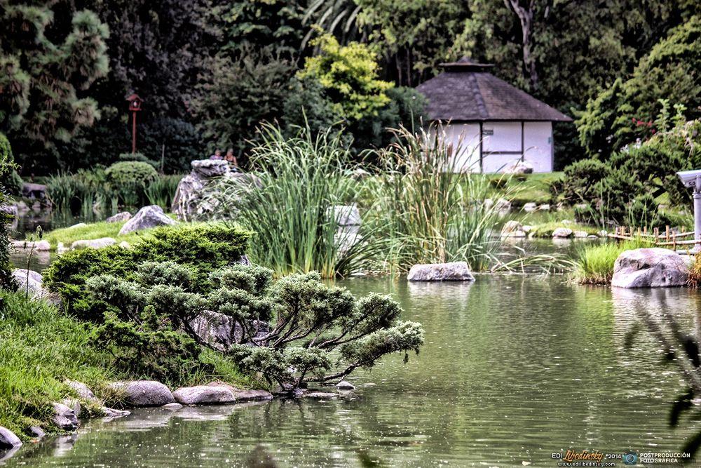 Jardín Japonés  by Edi Libedinsky