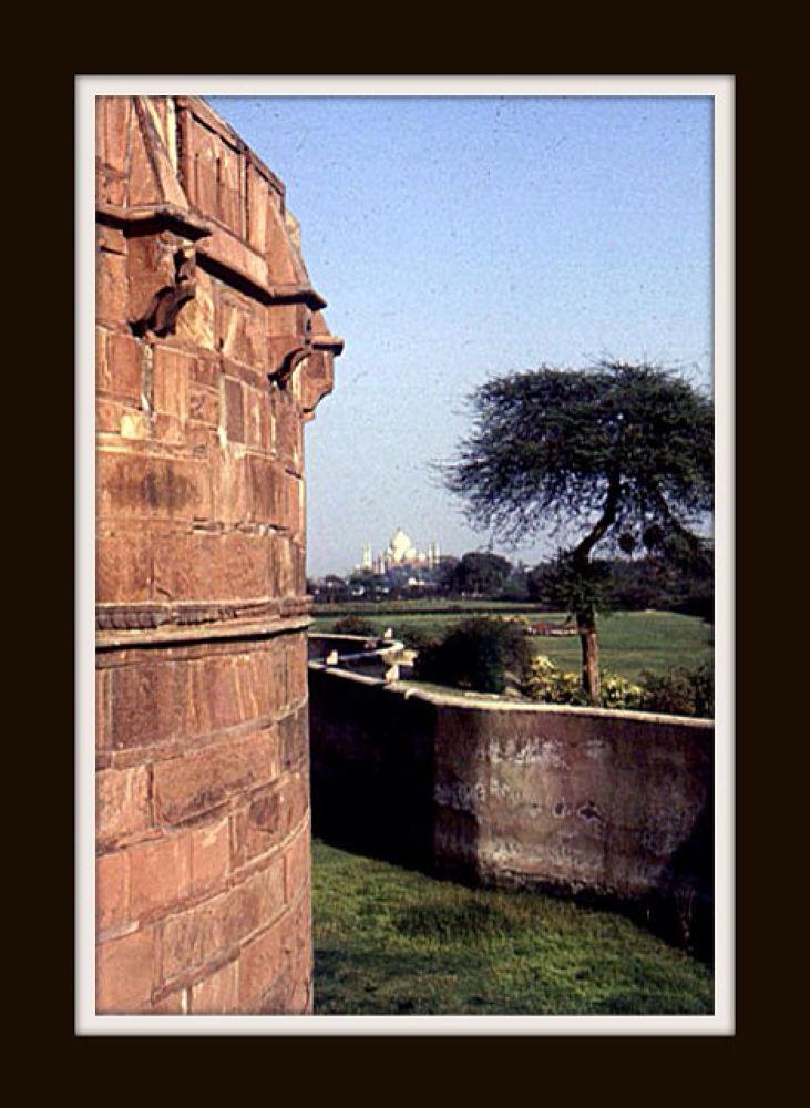 IMG_0986 by Prasad Siddhanthi