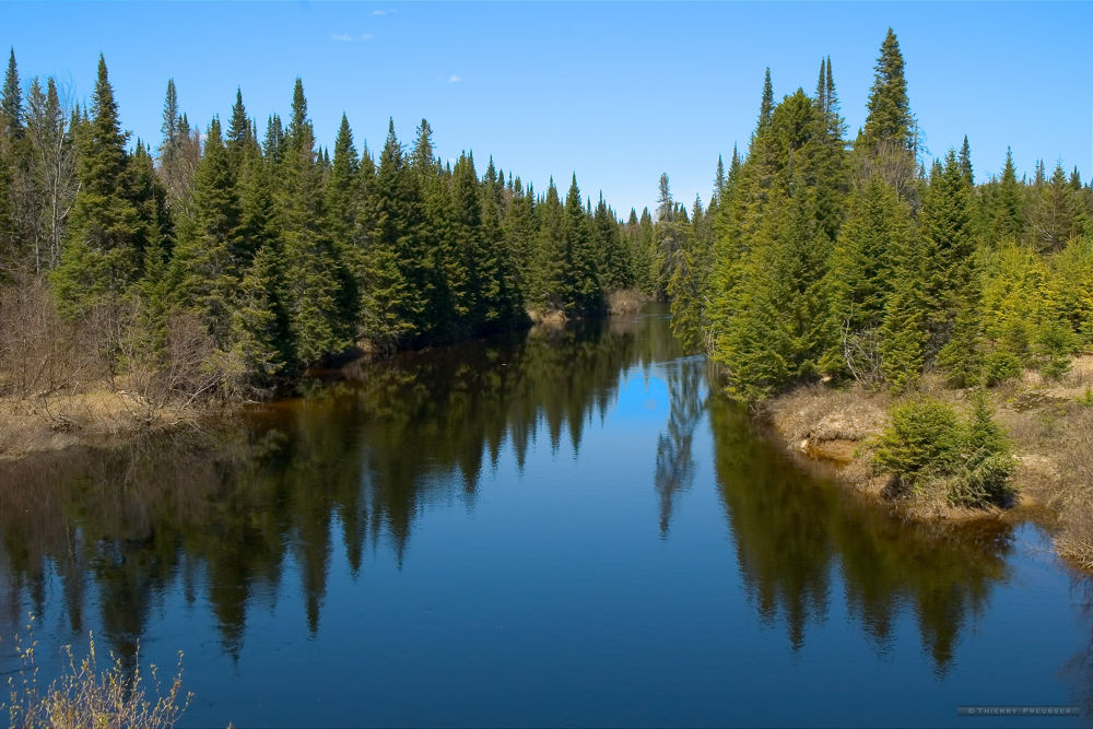 Lake in the wild nature of Canada by Thierry Preusser