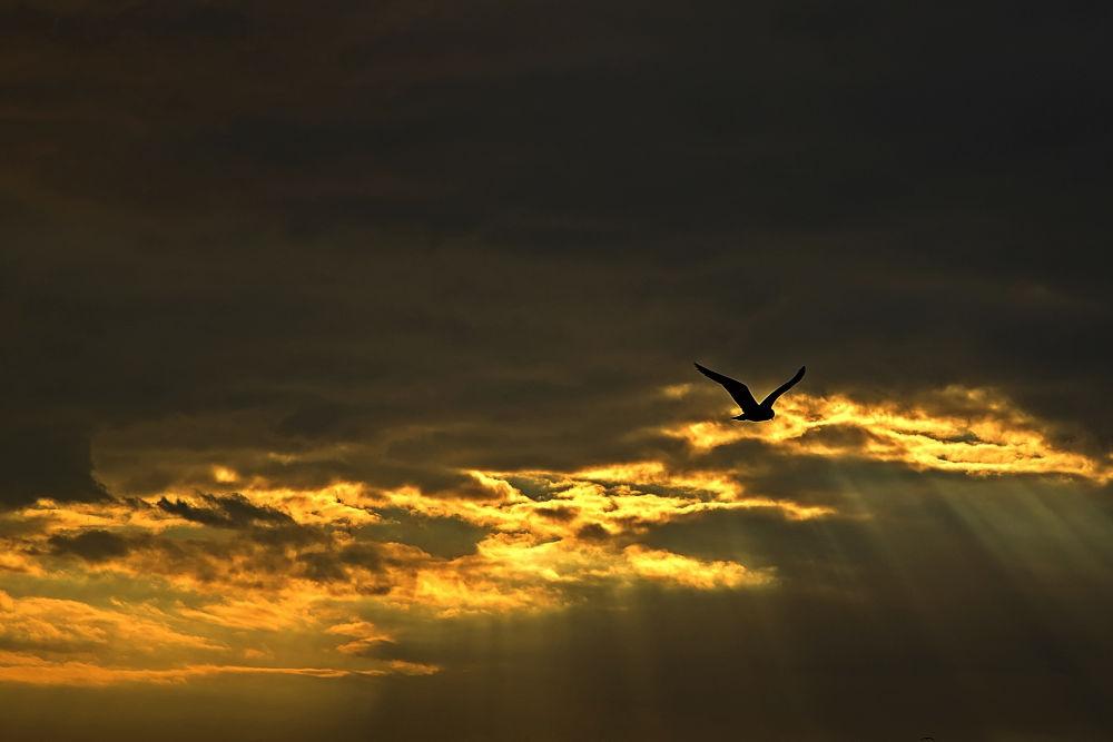 sky by Yılmaz Savaş Kandağ