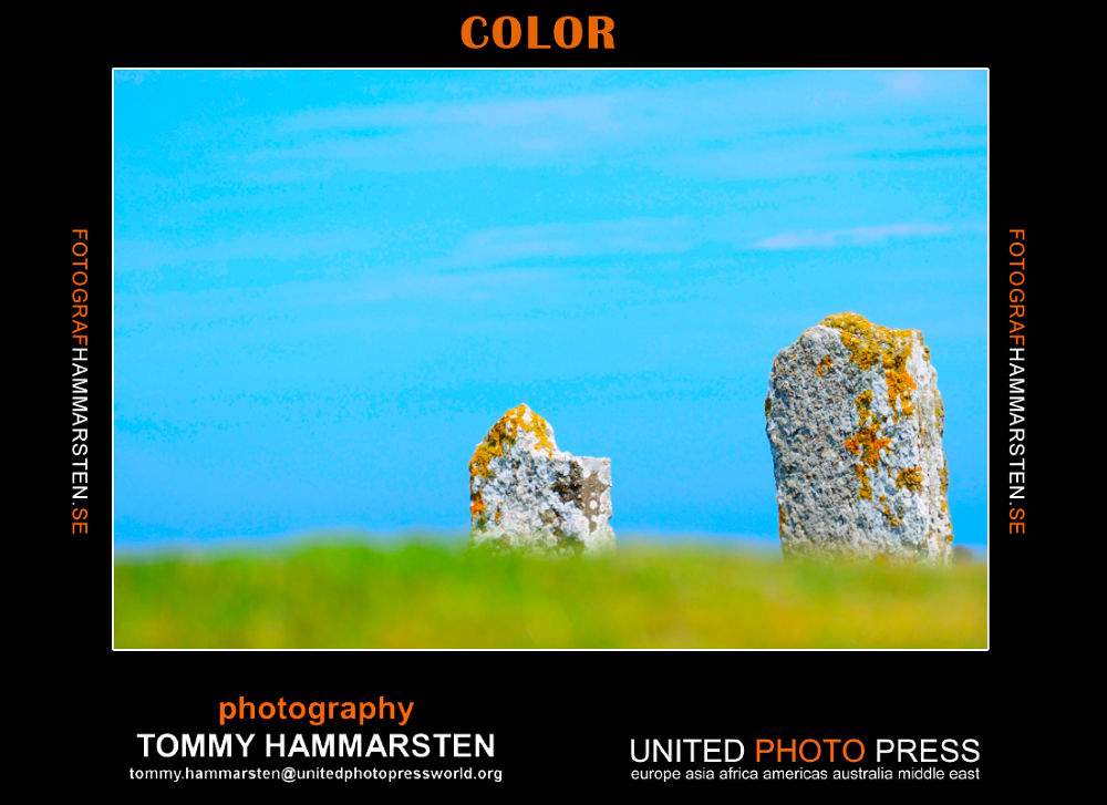 color2 by tommytechno