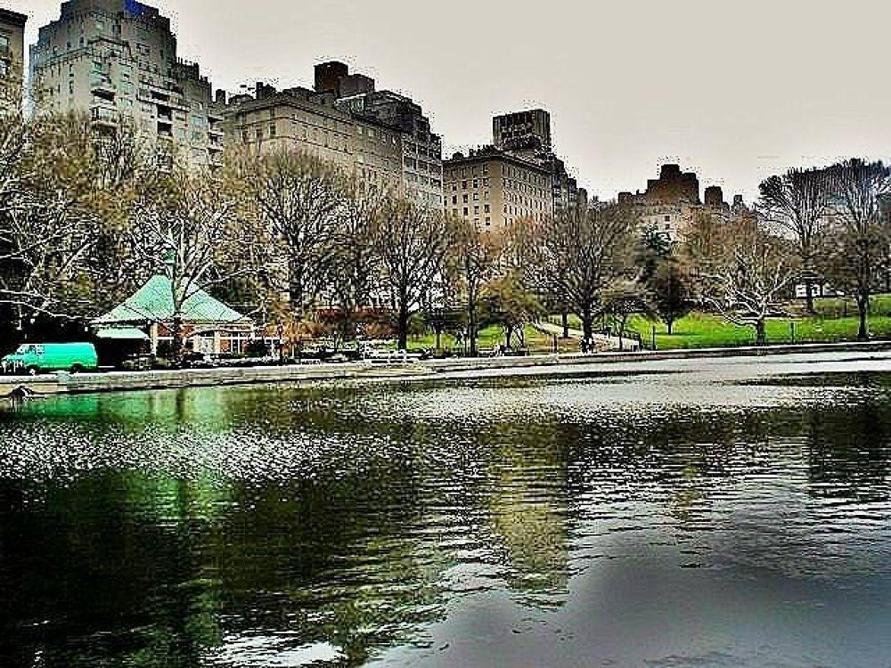 Central Park NY by Liborio Drogo