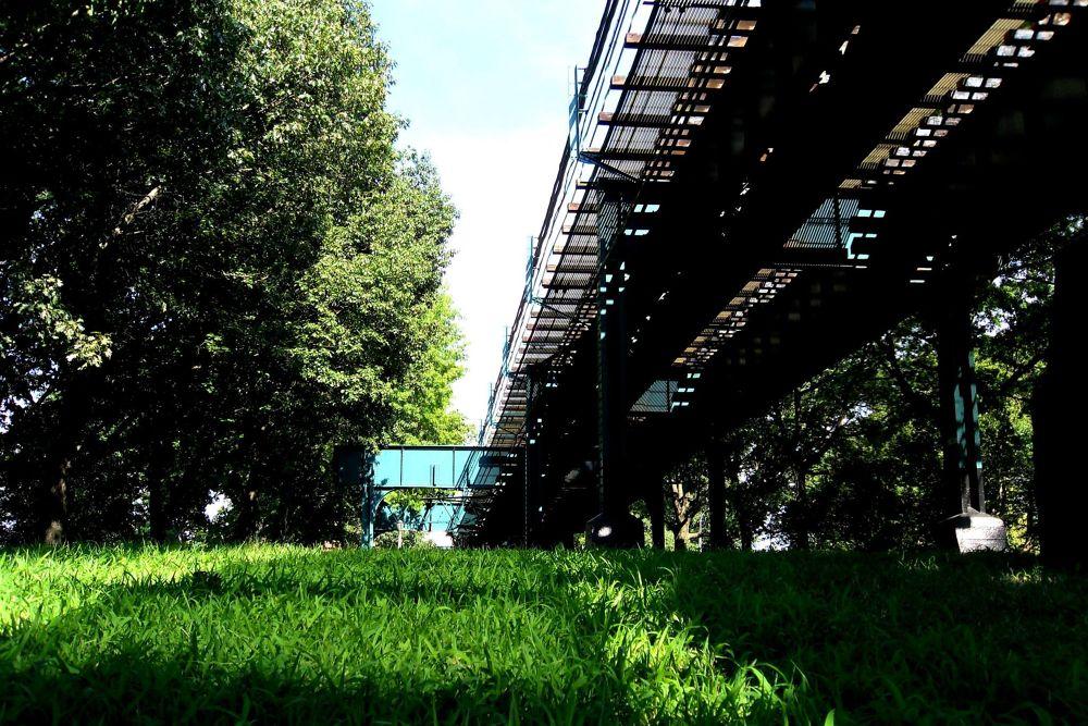 NY NY, by Liborio Drogo