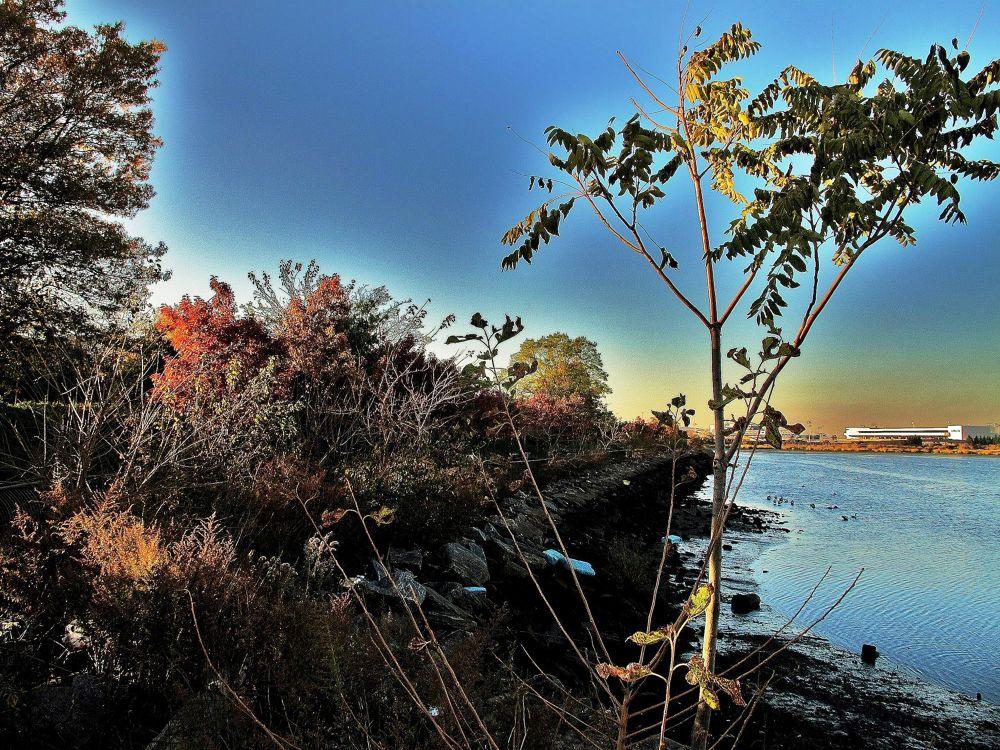 sundown au bord de l eau, NY by Liborio Drogo
