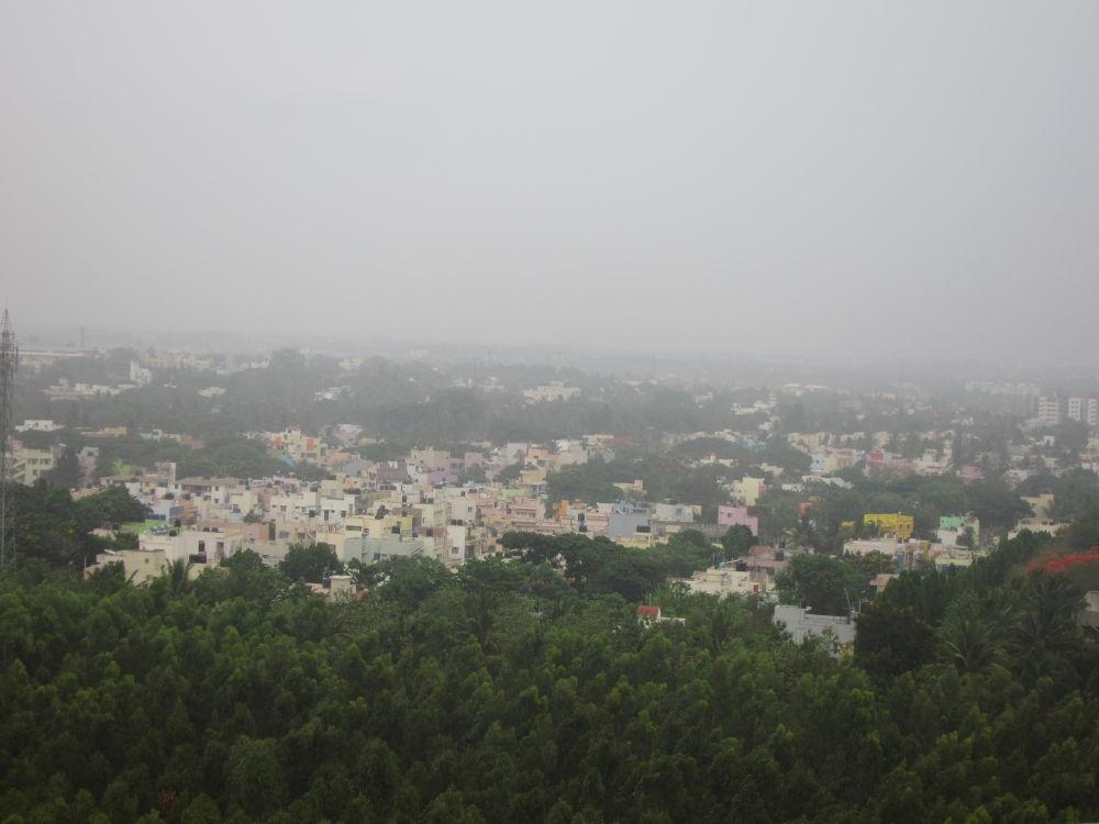 IMG_0648 by Indrani Bhattacharya