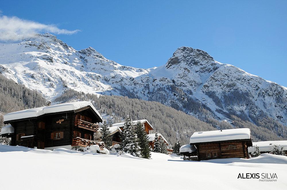 Swiss by AdaS
