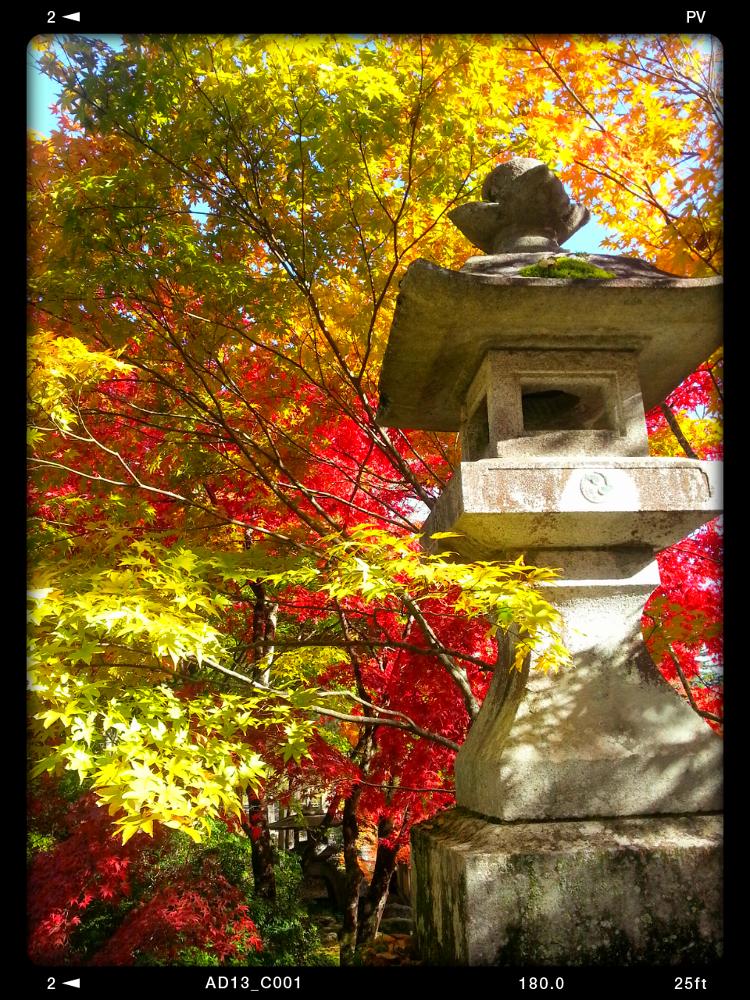 2012-11-08 08.00.59 by Hisashi.Nagahiro