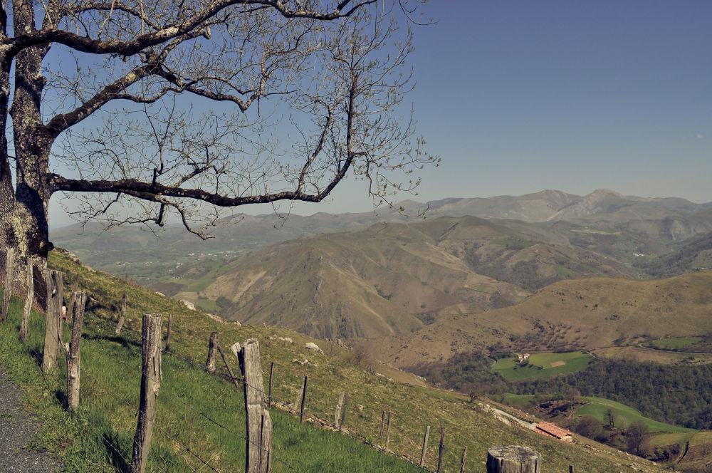 Camino de Santiago - close to Auberge Orisson by Carsten Busch