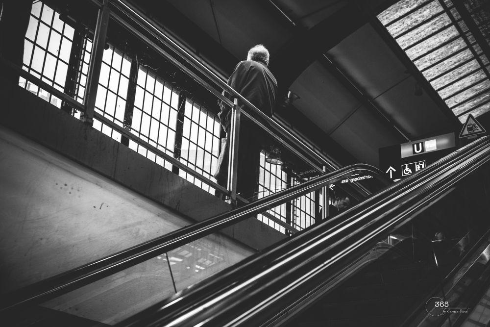 365_032 by Carsten Busch