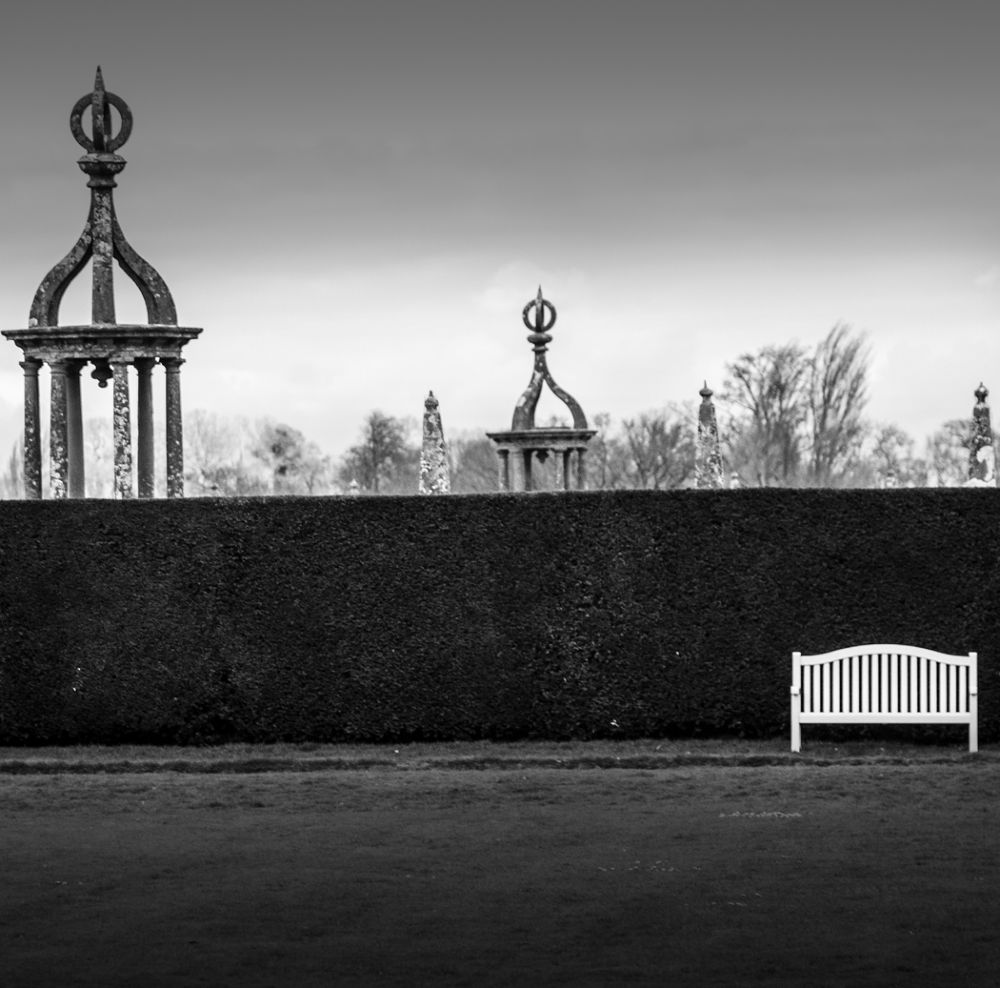 the bench  by Stephen McNally