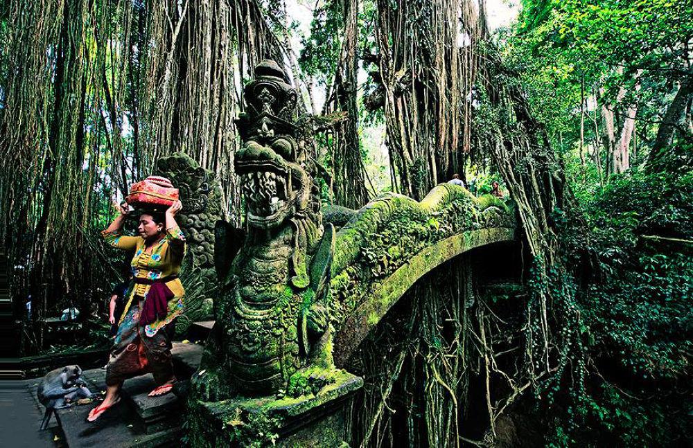 Bali by Lea Bingley