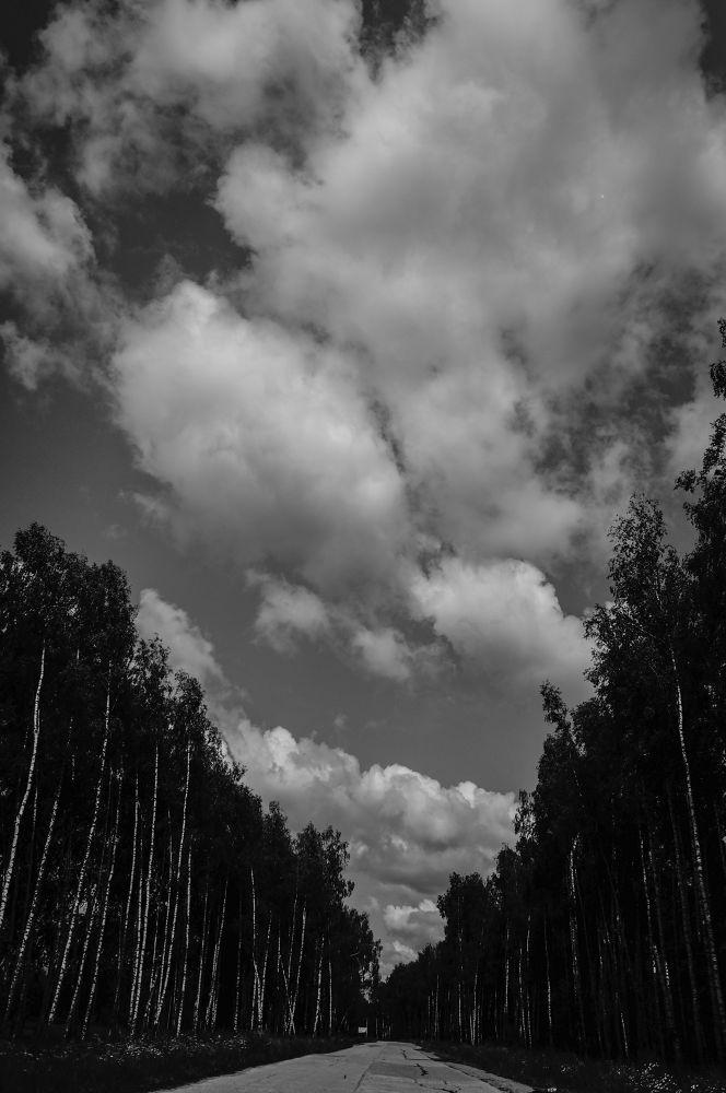 DSC07025 by Олег Ким