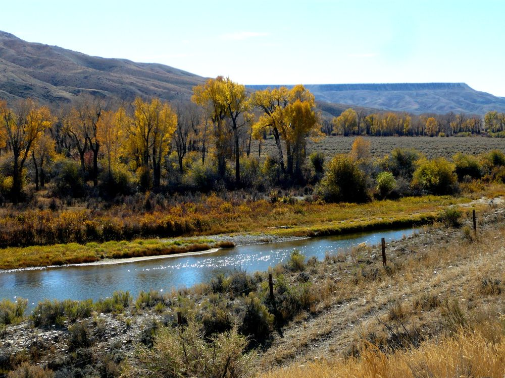 P1090128 by Mark Court (MyWyomingPhotography)