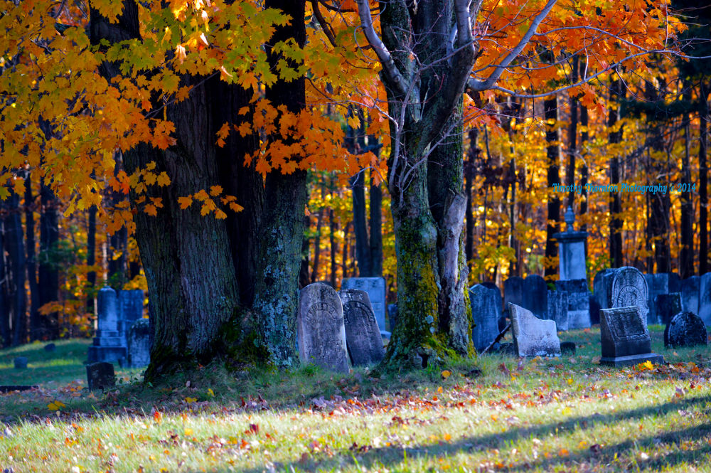 Autumn Graveyard by Timothy Thornton