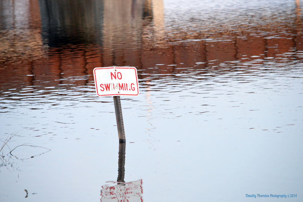 No Swimming by Timothy Thornton