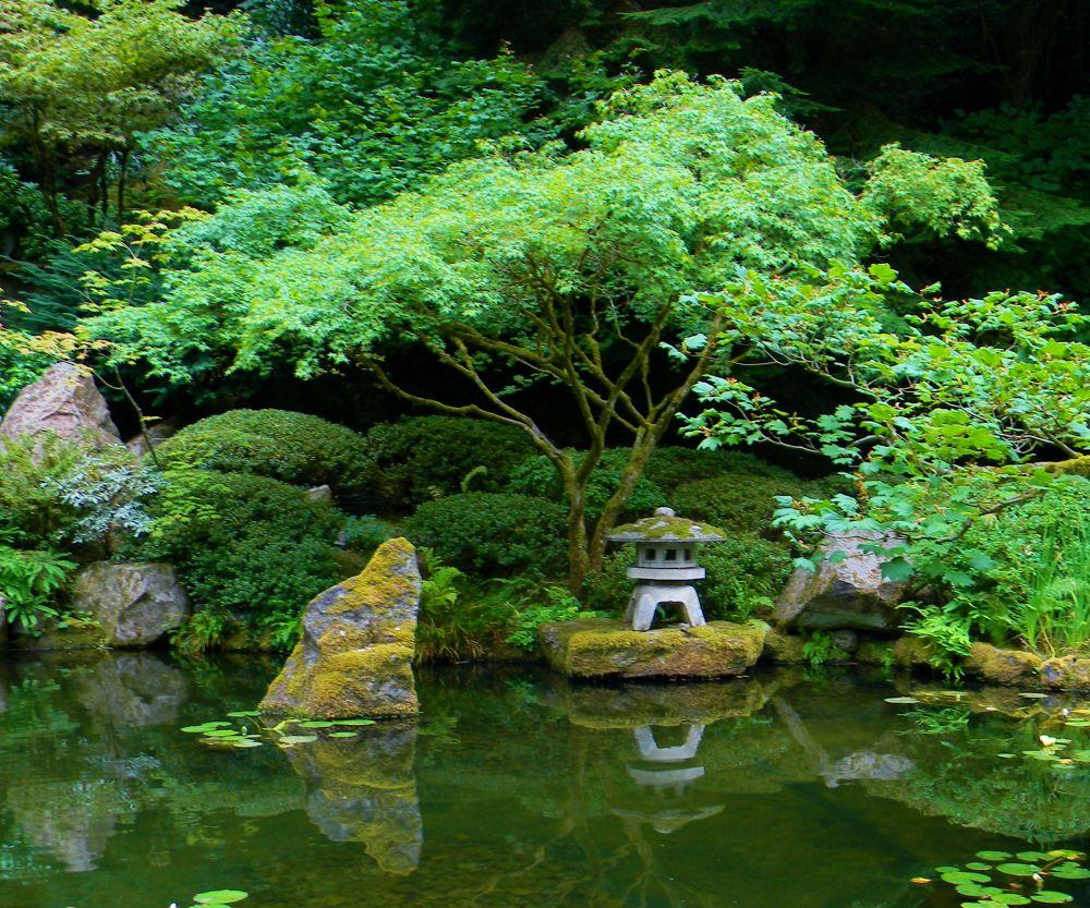 Japanese Garden by mnmphotoart