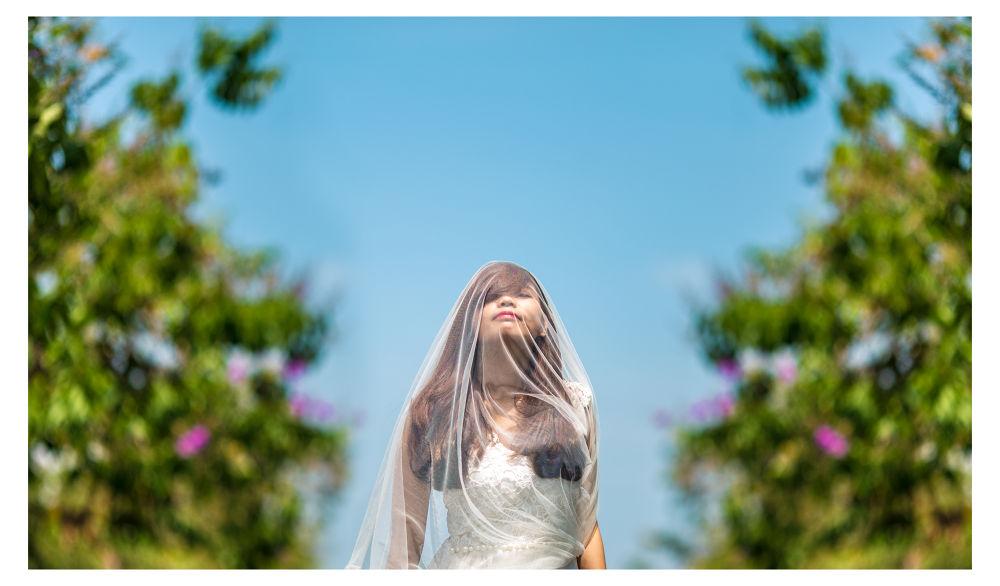 I shine under sunshine by Hoàng Tidus