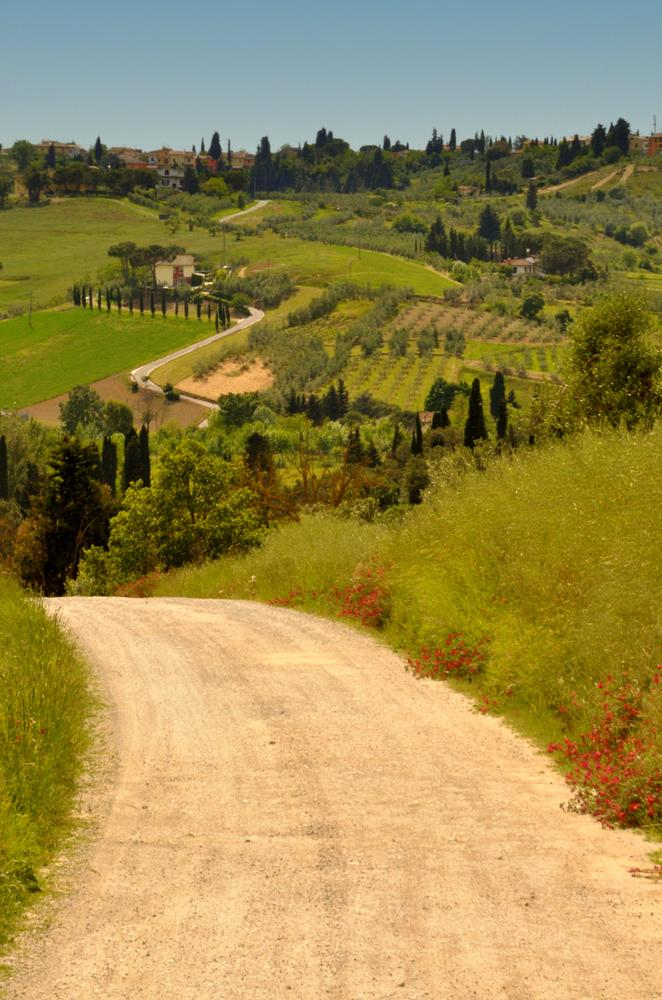 In my Tuscany - 3 by Cristina Masoni