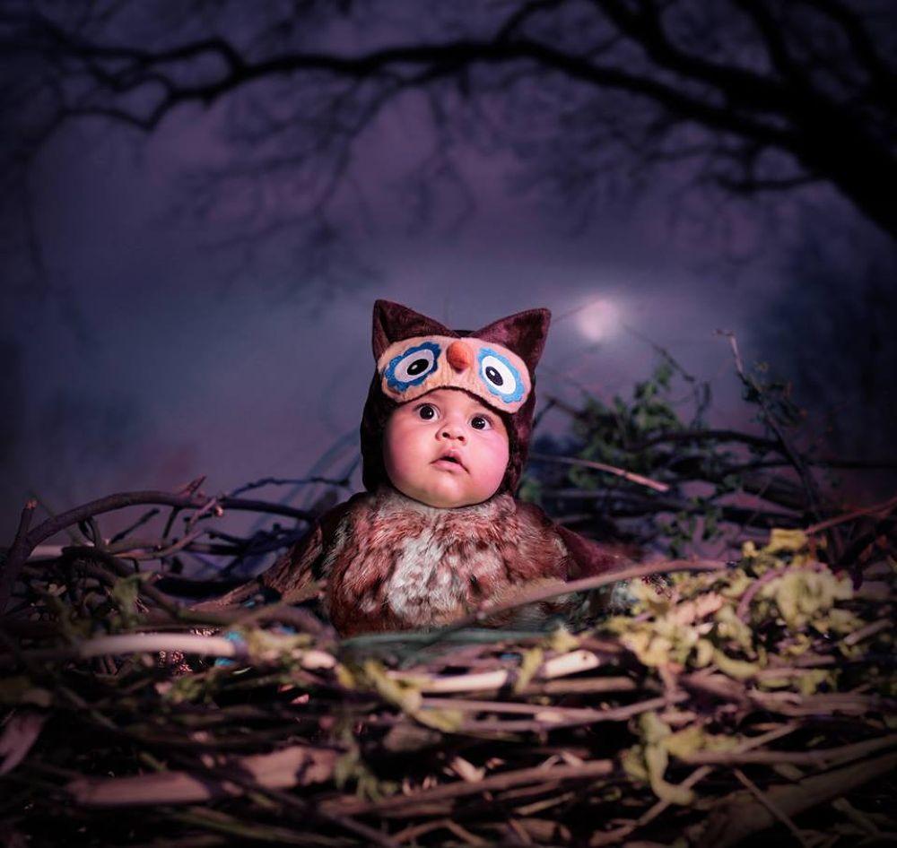 baby owl by Ewa Dudek