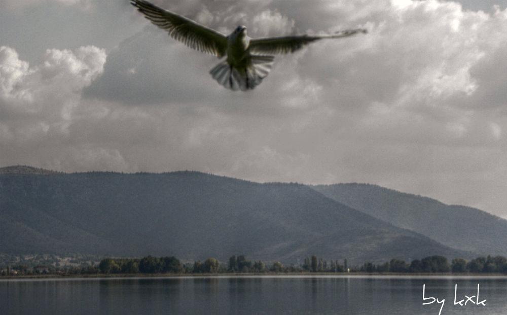 Kastoria lake by kxkosmas