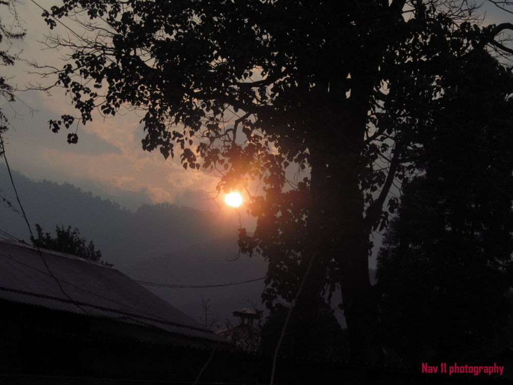 one morning ..! by Navdeep Thapa