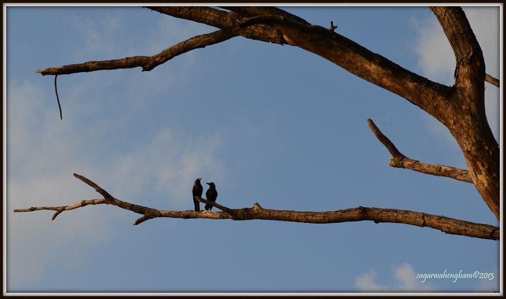 lover point. by Sagar Wahengbam