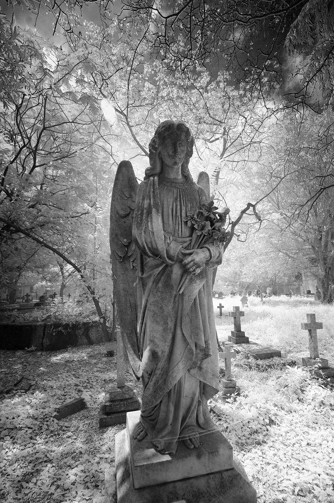 angel by Wanderlust India