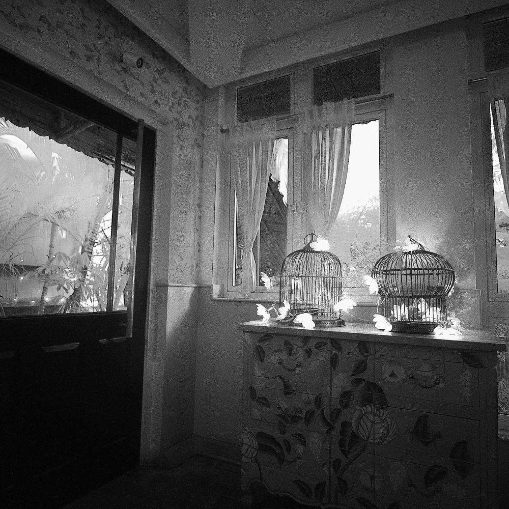 captured light by Wanderlust India