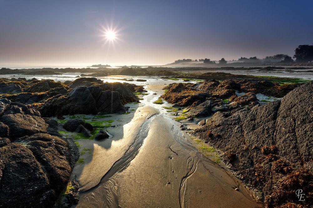 plage du marais salé, l'ile d'yeu by pascalevain