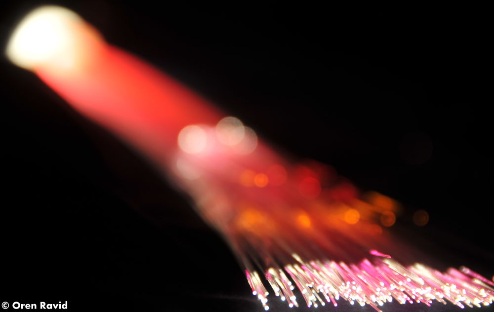 Fiber Optics by Oren Ravid