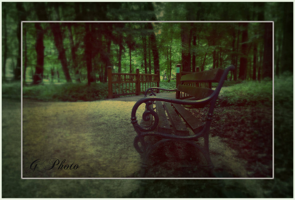 Dream by Gordana