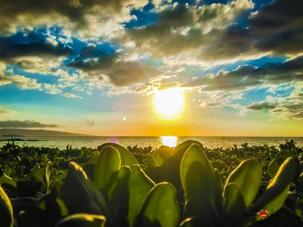 Maui Sunset by Captured On Maui