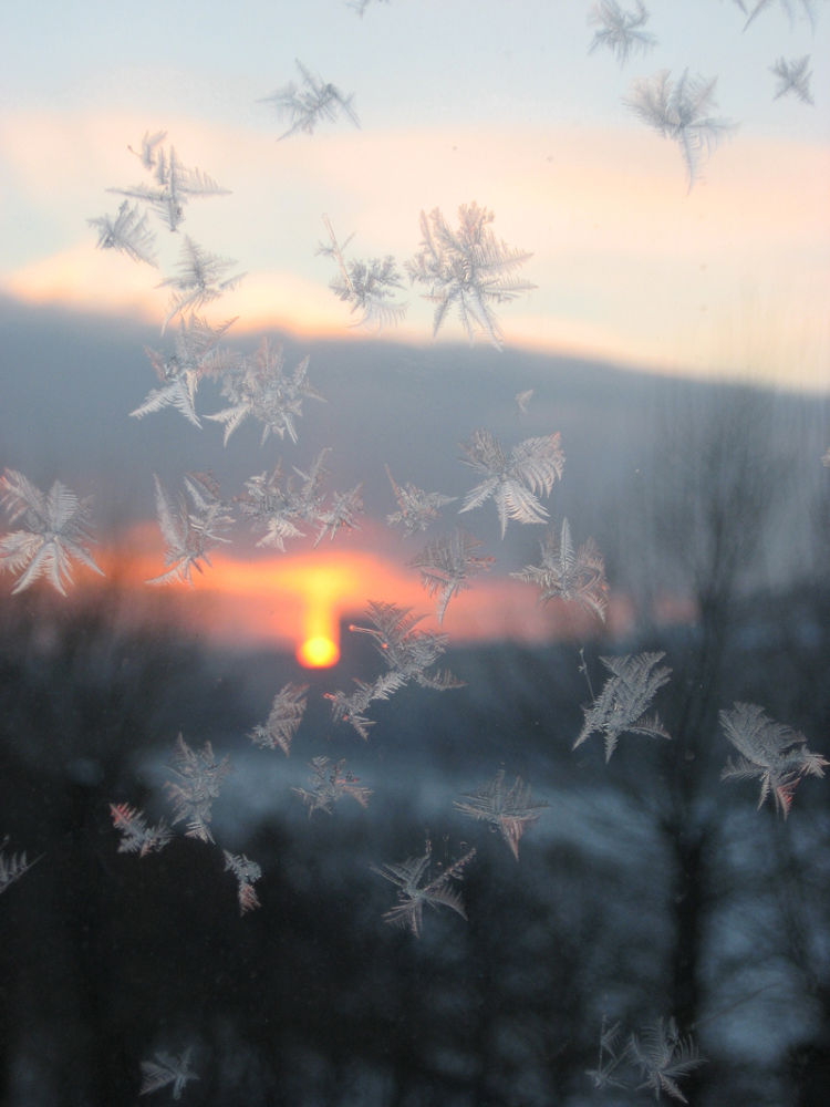 Зимние мотыльки by tarutinaolga2012