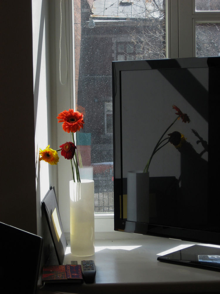 Солнечное забытьё by tarutinaolga2012