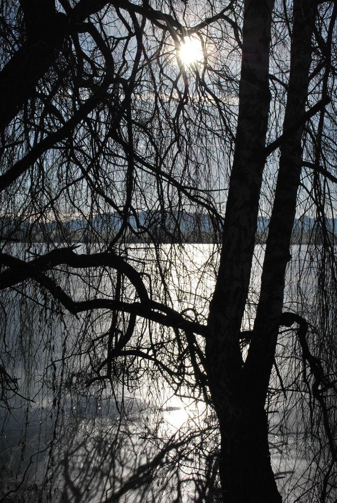 Sun behind bars by Zdenek Zavadil