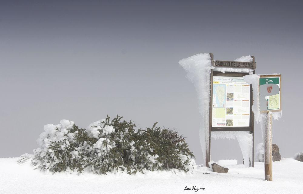 _MG_1867 - copia Winter scene on the top of my island I. by Luis Higinio Hernandez Pablo
