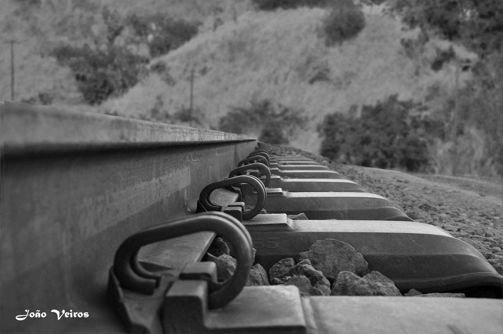 The Music of Iron Train by João Soares Veiros