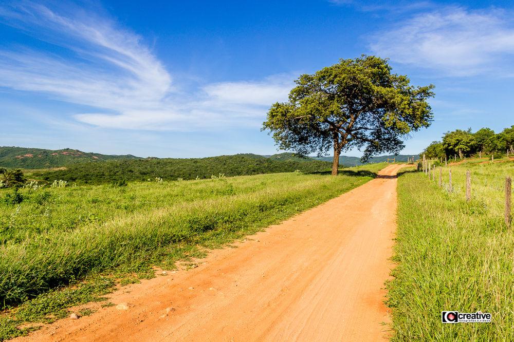 Estrada de terra by Creative Fotografias