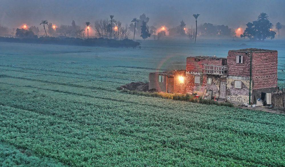 Rural Scene . by alialhedek